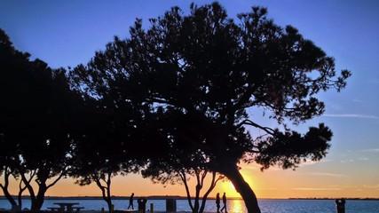 Sunset Silhouette People Walking in Urban Park along Waterfront