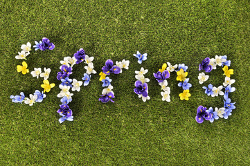 The word Spring written with flowers