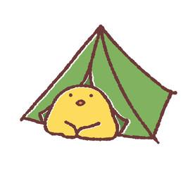 テントとヒヨコ