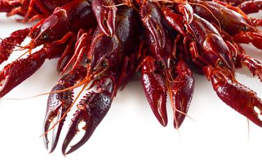 Detalle de cangrejos