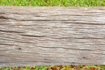 vieux tronc de bois