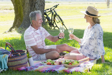 Senior couple drinking wine sitting on picnic blanket