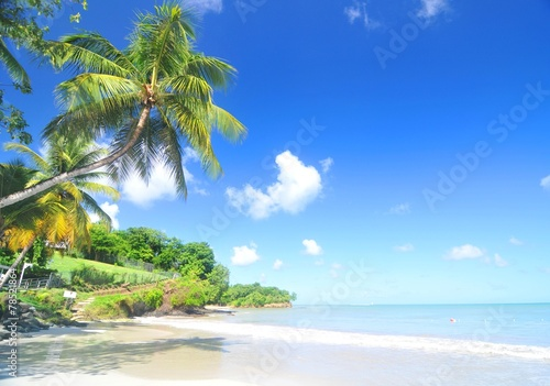 Papiers peints Caraibes Caribbean beach