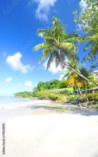 Fotobehang Caraïben Paradise island