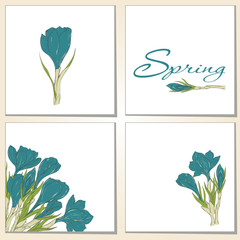 Cards with crocus spring flowers