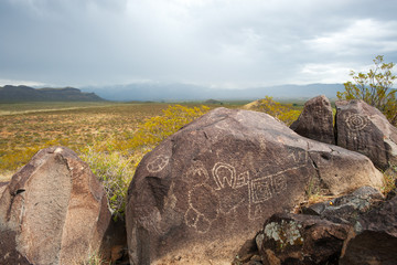 One of the rocks in Petroglyph National monument, NM