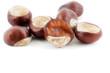 canvas print picture - Frucht bzw. Samen der Gewöhnlichen Rosskastanie