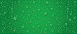 panorama of green water drops background - 78526036