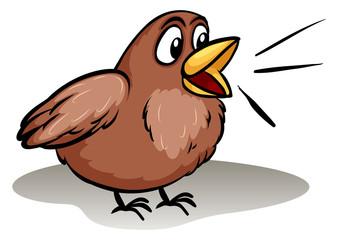 Talking like a little bird idiom