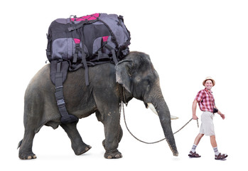 happy tourist walking a elephant, isolated on white background
