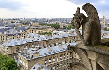 Notre Dame of Paris: Famous Chimera