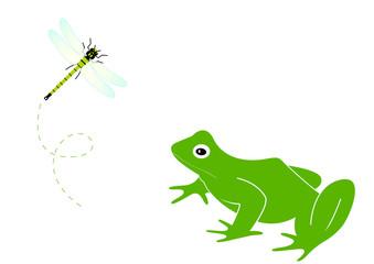Grenouille face à une libellule