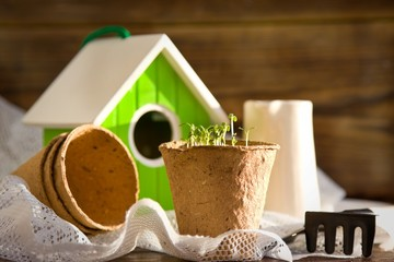 Peat pots, bird-house, seedlings and garden tools