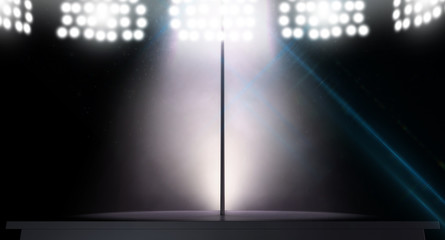 stripper pole and lights