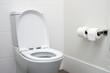 Leinwanddruck Bild - toilet