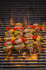 Kabobs on a Hot Flaming Barbecue Grill