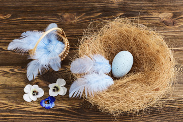 blue egg in a nest with feathers