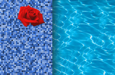 Swimming pool and red rose on tile ideal for backgrounds