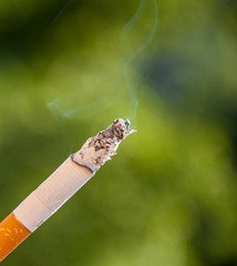 burning cigarette on green background
