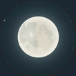 Realistic moon. Vector illustration - 78549881