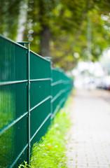 Green Iron Fence Macro View