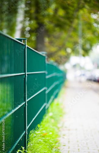 Foto op Plexiglas Wand Green Iron Fence Macro View