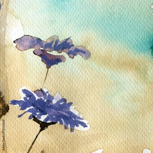 cornflowers, © bruniewska