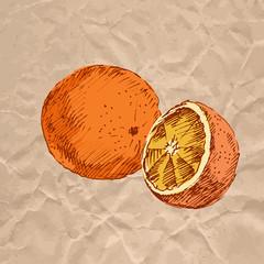 Orange. Colorful sketch on crumpled kraft paper.