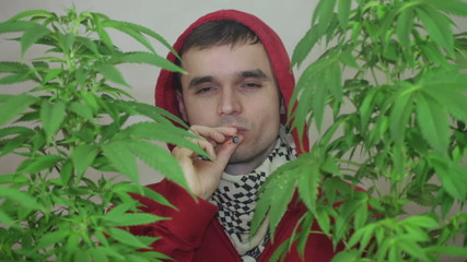 Man smoking Marihuana joint