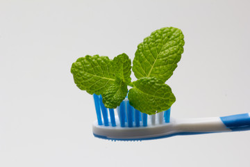 cepillo de dientes 05