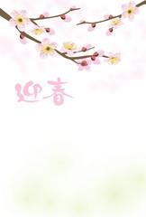 梅の花 賀詞付