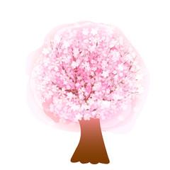 桜 花 木
