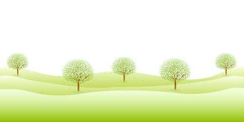 木 葉 新緑
