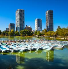 Ueno Park, Tokyo, Japan.