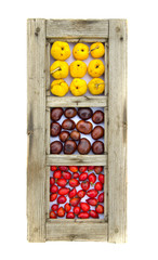 healthy fruits and conkers in old wooden window frame isolated
