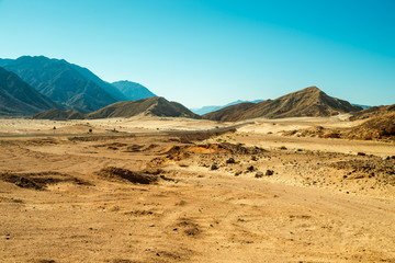 Road through desert,  Sinai, Egypt