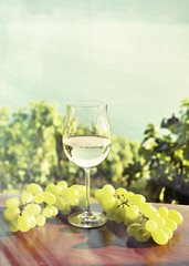 Wine ad grapes. Lavaux, Switzerland