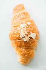 closeup Fresh delicious croissant  white background.