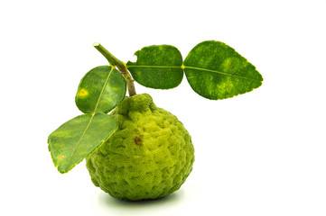 Bergamot on a white background.