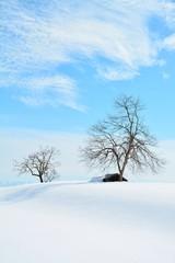 豪雪に埋まる雪峠の小屋