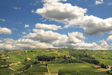 Hills of Piedmont. Northern Italy.
