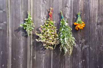 medical herbs and buckwheat bunch on wooden barn wall