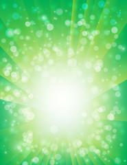 緑輝き44