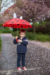 Adorable little boy, holding umbrella, walking in a park