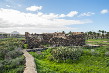 Ruin surrounded by tropical vegetation