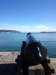 Cannone nel porto di La Spezia
