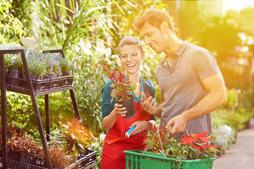 Verkäuferin berät Mann im Blumenladen