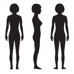 human body anatomy,front, back side, vector woman silhouette