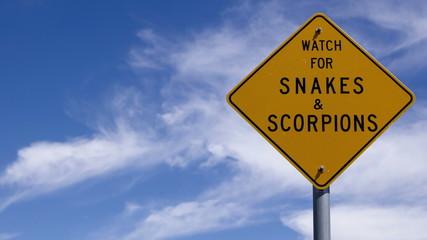 4K Time lapse close up snake warning