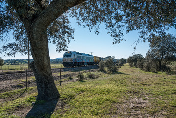 freight train crossing the countryside